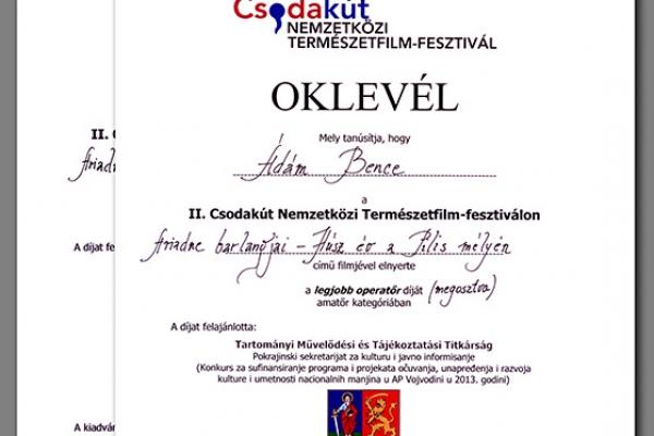 csodakut-2013-oklevelek7E51870A-5B5B-D309-3949-D3EF3A5C48B7.jpg